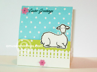 Lamb_maryrose