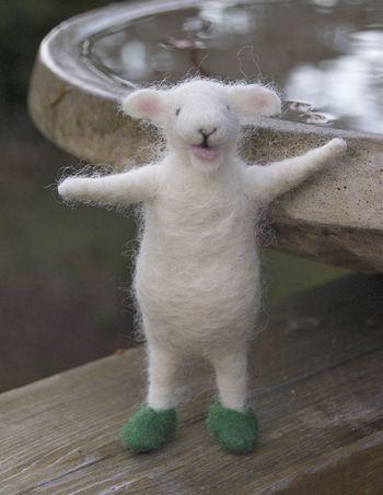 Wool pets sheep