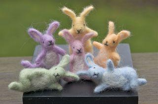 Wool pets bunnies