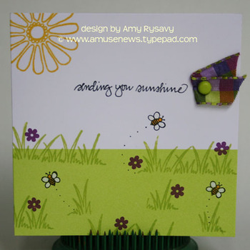 Amy_rysavy_bees_with_sending_sunshi