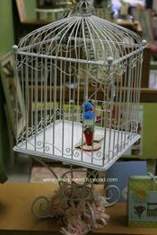 Birdcage_2