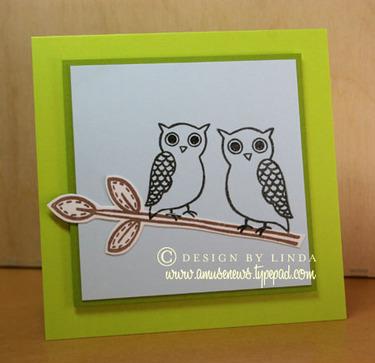 Owls_card